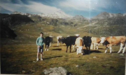 Et là avec d'autres vaches...